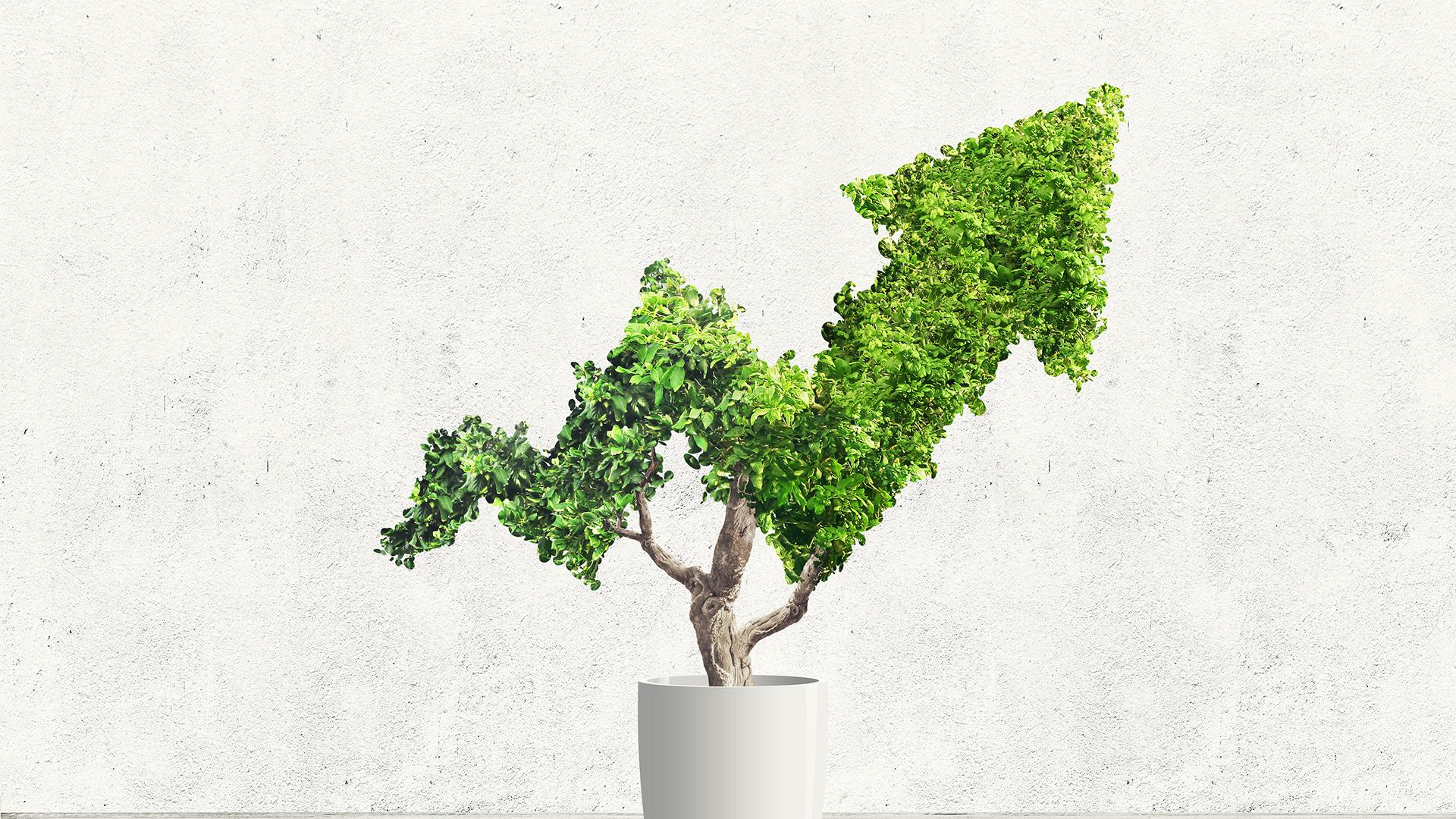 PARMENAS Finanzierung - Unternehmenswachstum und nachhaltige Wertsteigerung