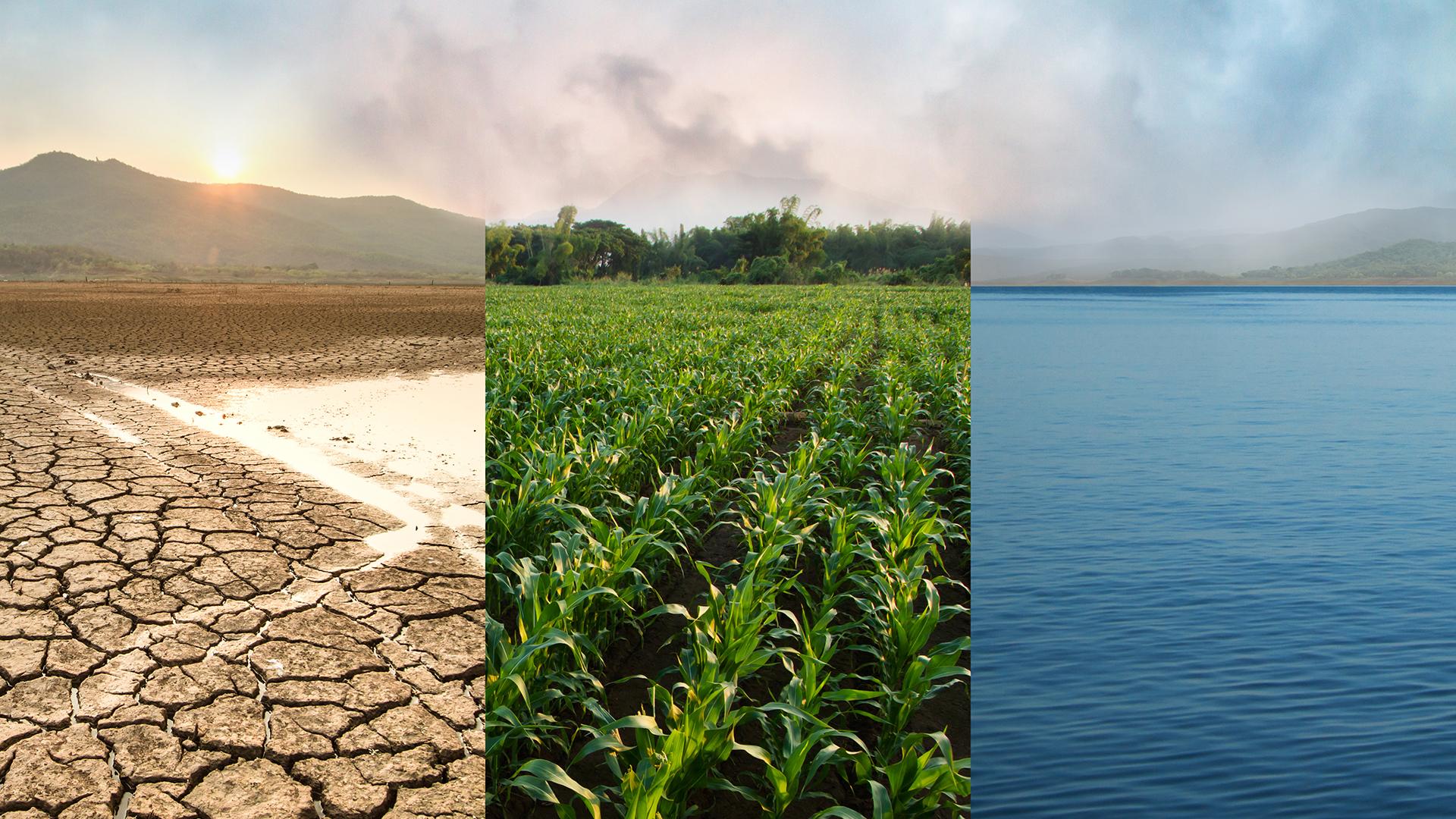 PARMENAS Impact Investing - Investitionen für nachhaltige Lösungen