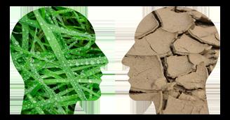 PARMENAS Akademie - Bewusstseins BILDUNG - Mindset für nachhaltiges wirtschaften